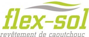 flexsol-blogue-350